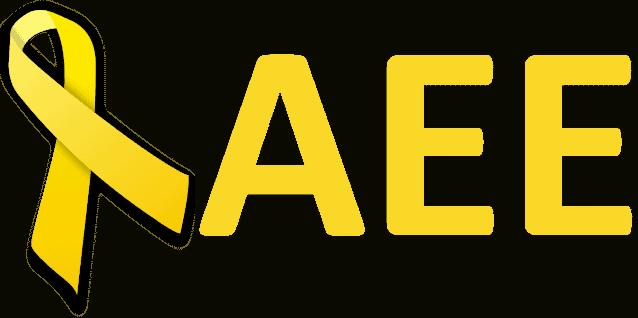 AEE. Asociación Endometriosis España. Qué hacemos y quiénes somos