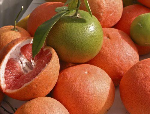 Pomelos contra la endometriosis gracias a la naringenina