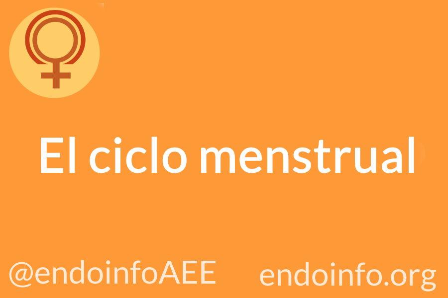 El ciclo menstrual. AEE